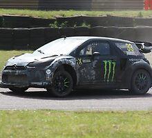 Liam Doran - Citroen DS3 WRC by Matt Dean
