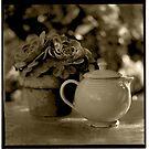 Tea Pot by Barbara Wyeth