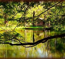 Cabin by the Pond by vigor
