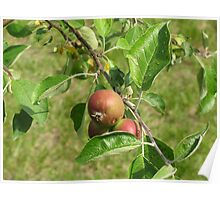 Real Life Isn't Perfect Poster