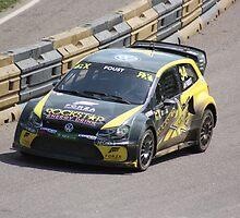 Tanner Foust - Volkswagen Polo WRC by Matt Dean