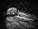 Light at tunnels end by clickinhistory