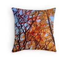 A Smattering of late Autumn Throw Pillow