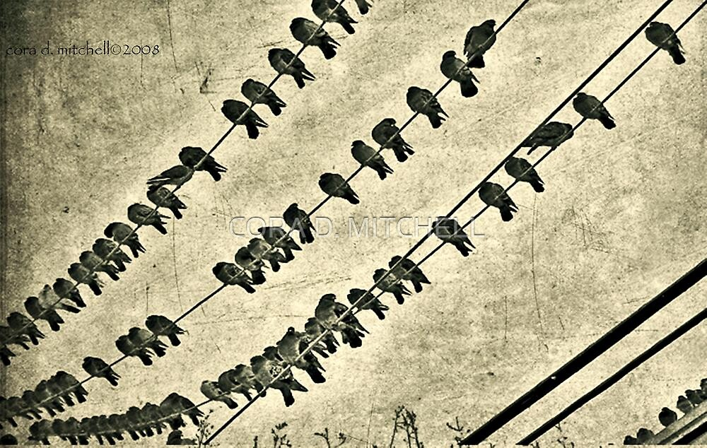 Birds on Wires (sepia) by CORA D. MITCHELL