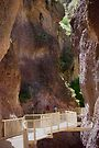 Catwalk in Whitewater Canyon by Vicki Pelham