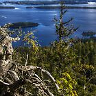 .beautiful nordic scenery - Koli  by Pentti