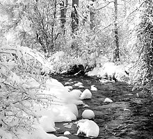 Gallatin Valley Creek by Kay Kempton Raade