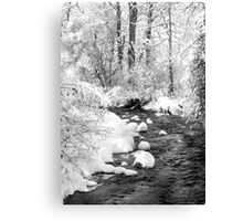 Gallatin Valley Creek Canvas Print