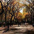 Central Park Fall 03 by chianing