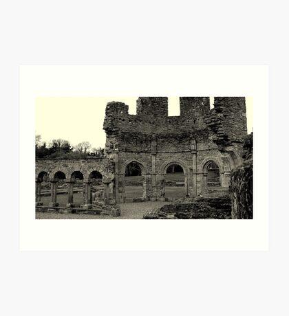 Lavado at Mellifont Abbey. Co, Louth. Ireland. Art Print