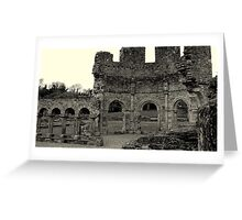 Lavado at Mellifont Abbey. Co, Louth. Ireland. Greeting Card