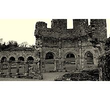 Lavado at Mellifont Abbey. Co, Louth. Ireland. Photographic Print