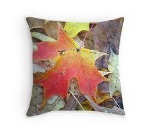 Teardrops on a Leaf Throw Pillow