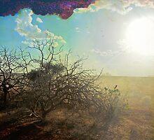 Kenyan Sunset by sephoto
