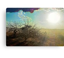 Kenyan Sunset Canvas Print