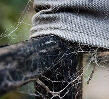 Interwoven Webs by Mandi Whitten