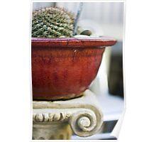 Feeling Cactus Poster