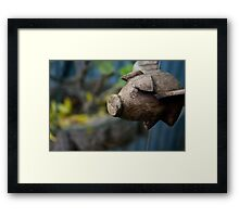 Pig Flu Flies Framed Print