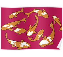 Swimming Japanese Carp – orange & raspberry Poster