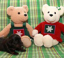 Christmas Pups by Ree  Reid