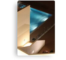 night dive Canvas Print