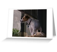 Doggie in the Window Greeting Card