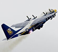 Fat Albert - Blue Angels Support Hurcules by Michael  Moss