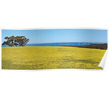 Yellow Fields, Deep Creek Poster