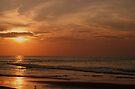 Evening Light by Sandy Keeton