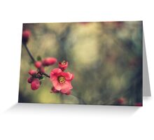 blossoms, painterly Greeting Card