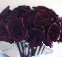 Ailing roses... by Tasha Prescott