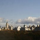 Over Central Park by Tracy Persson