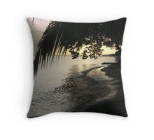 Silvery Sunset...Central America Throw Pillow