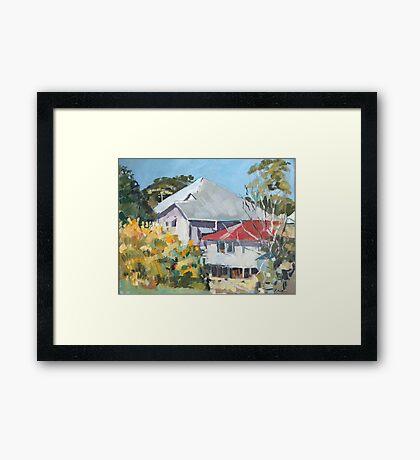 Wattle in Flower Framed Print