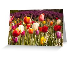 Spring Flowers in Bloom Greeting Card