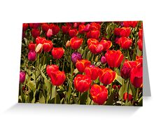 Red Spring Flowers Greeting Card