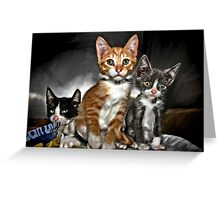 Creamsicle, Grayson and Melvin Greeting Card