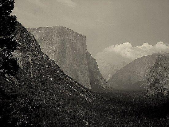 Yosemite's Valley View by davesdigis
