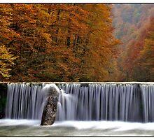 autumn raphsody by Stankina