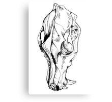 Canine Skull Metal Print