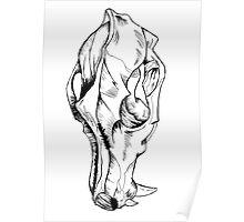 Canine Skull Poster
