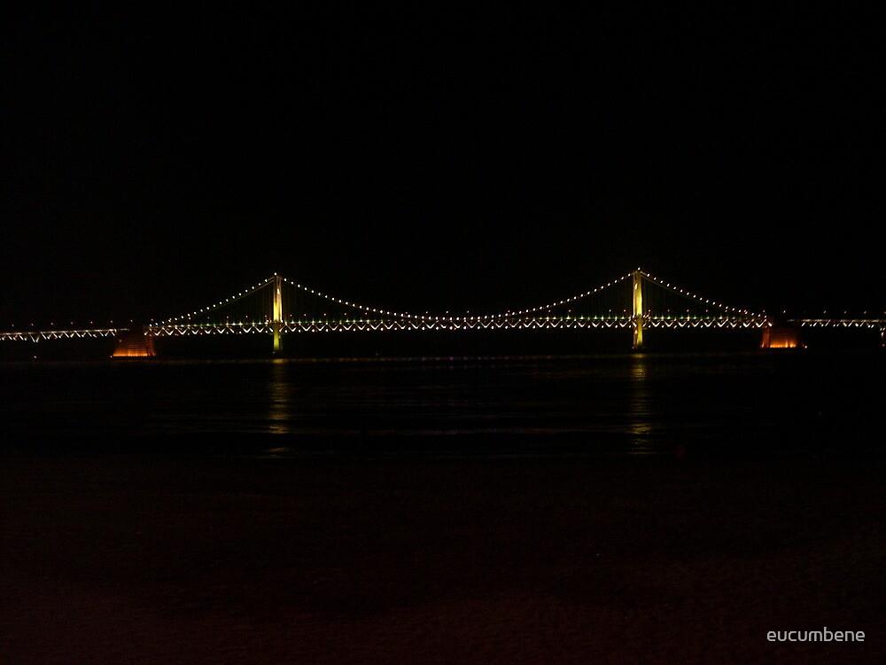Gwangan Bridge - Gwangalli (Busan - Korea) by eucumbene