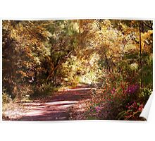 Colourful path  round the lake Poster