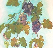 October Grapes by JANET SUMMERS
