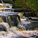 Waterfall #2 by Trevor Kersley