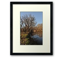 Reflections on the water Framed Print