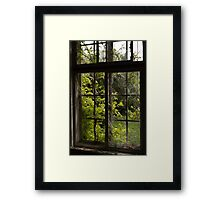 Nature's Window Framed Print