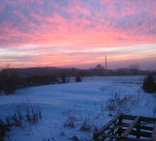 Winter mood by landsgrav