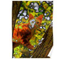 Orange Cat in Tree Poster