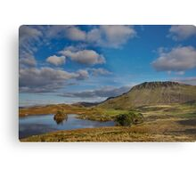 Cregennan lake and Cader Idris Metal Print